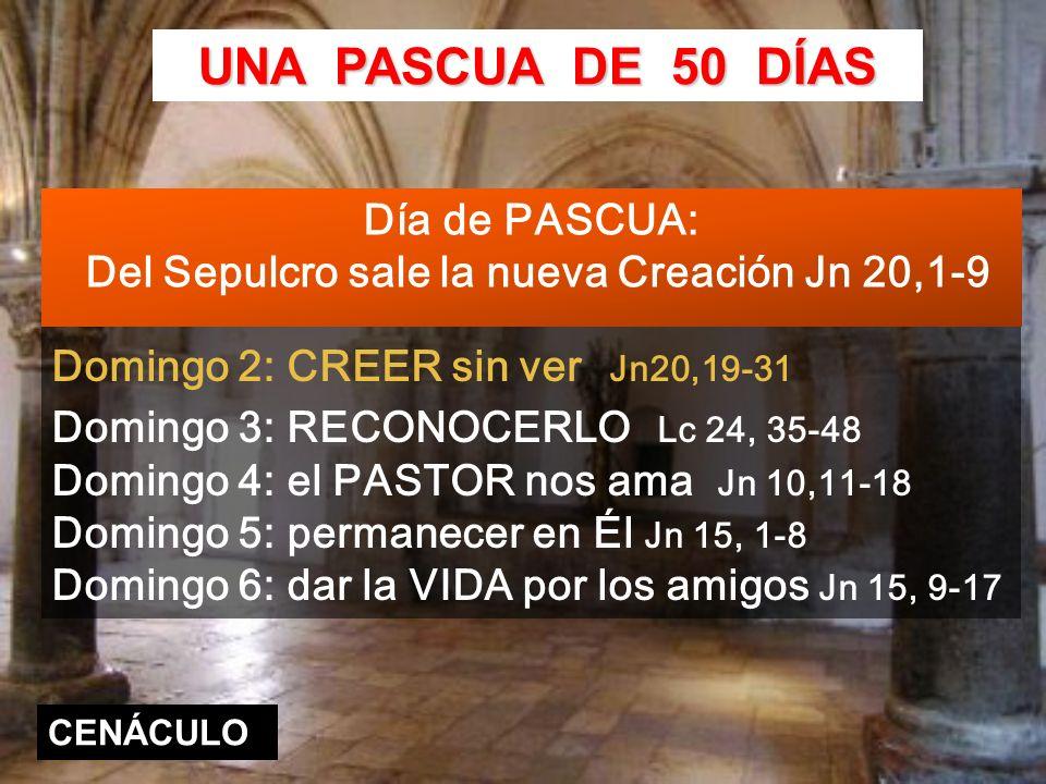 Domingo 2: CREER sin ver Jn20,19-31 Domingo 3: RECONOCERLO Lc 24, 35-48 Domingo 4: el PASTOR nos ama Jn 10,11-18 Domingo 5: permanecer en Él Jn 15, 1-8 Domingo 6: dar la VIDA por los amigos Jn 15, 9-17 UNA PASCUA DE 50 DÍAS CENÁCULO Día de PASCUA: Del Sepulcro sale la nueva Creación Jn 20,1-9