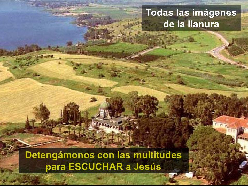 Todas las imágenes de la llanura Detengámonos con las multitudes para ESCUCHAR a Jesús