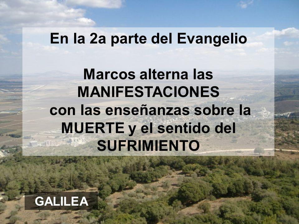 En la 2a parte del Evangelio Marcos alterna las MANIFESTACIONES con las enseñanzas sobre la MUERTE y el sentido del SUFRIMIENTO GALILEA