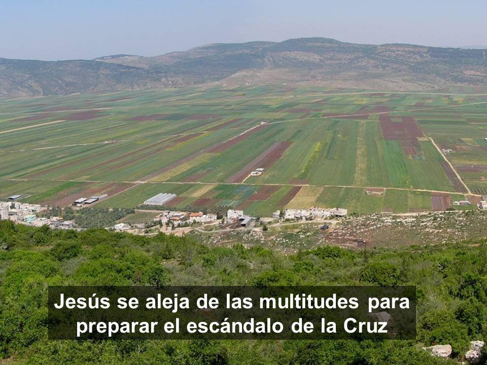 Jesús se aleja de las multitudes para preparar el escándalo de la Cruz