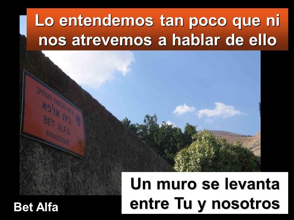 Lo entendemos tan poco que ni nos atrevemos a hablar de ello Un muro se levanta entre Tu y nosotros Bet Alfa
