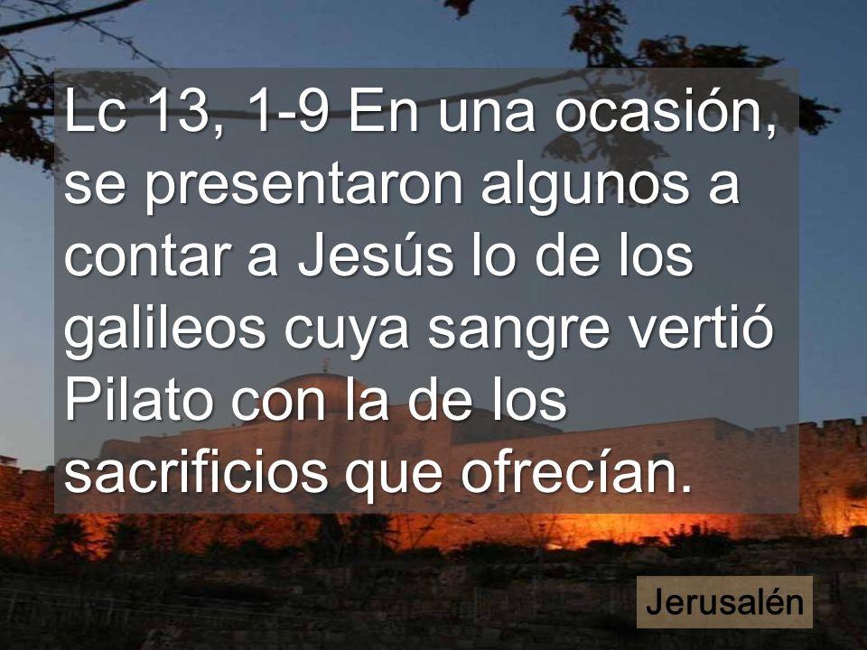 El evangelio de hoy mira hacia Jerusalén Dios espera los frutos de esta cuaresma
