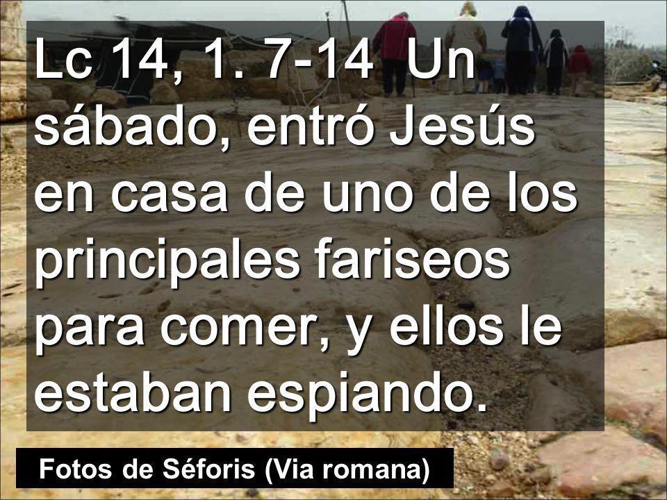Señor Jesús, haz que comprendiendo los valores radicales del Reino, ayudemos a cambiar los de nuestra sociedad