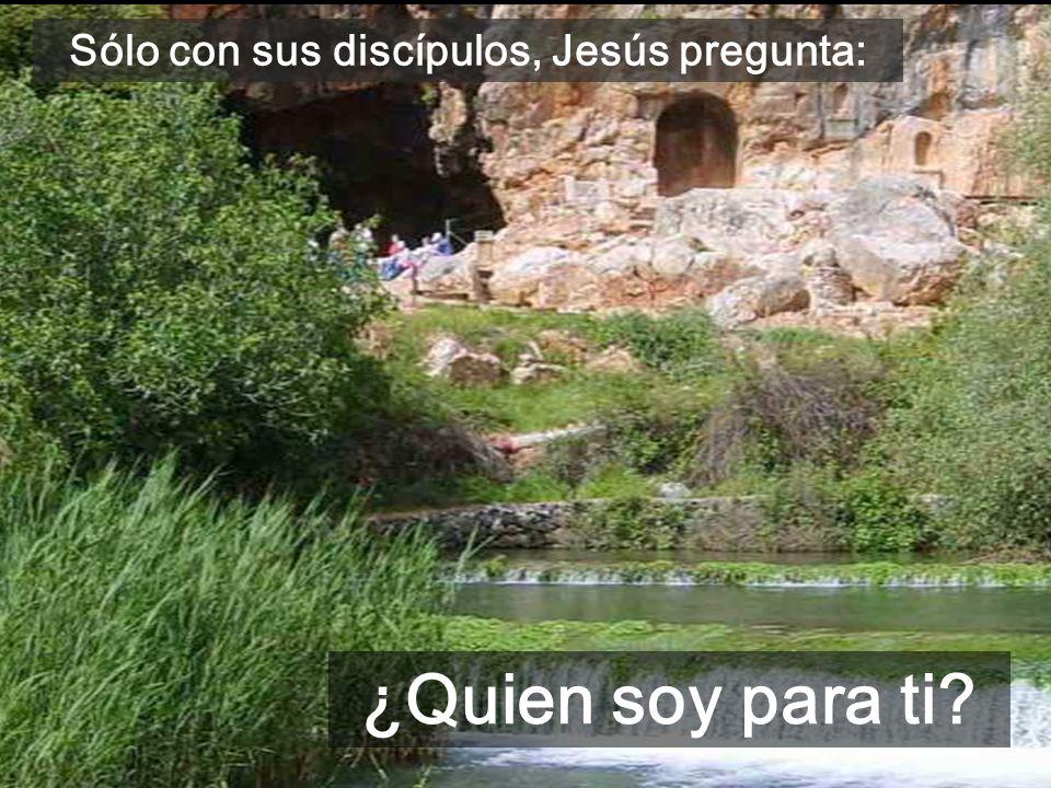Sólo con sus discípulos, Jesús pregunta: ¿Quien soy para ti?