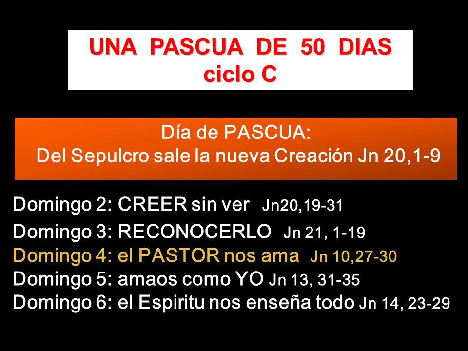 Domingo 2: CREER sin ver Jn20,19-31 Domingo 3: RECONOCERLO Jn 21, 1-19 Domingo 4: el PASTOR nos ama Jn 10,27-30 Domingo 5: amaos como YO Jn 13, 31-35 Domingo 6: el Espiritu nos enseña todo Jn 14, 23-29 UNA PASCUA DE 50 DIAS ciclo C Día de PASCUA: Del Sepulcro sale la nueva Creación Jn 20,1-9