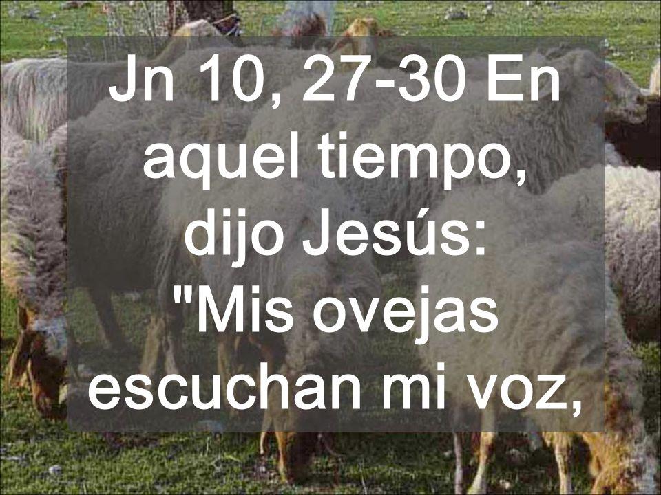 Jn 10, 27-30 En aquel tiempo, dijo Jesús: Mis ovejas escuchan mi voz,