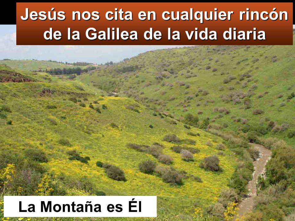 Mt 28,16-20 En aquel tiempo, los once discípulos se fueron a Galilea, al monte que Jesús les había indicado.