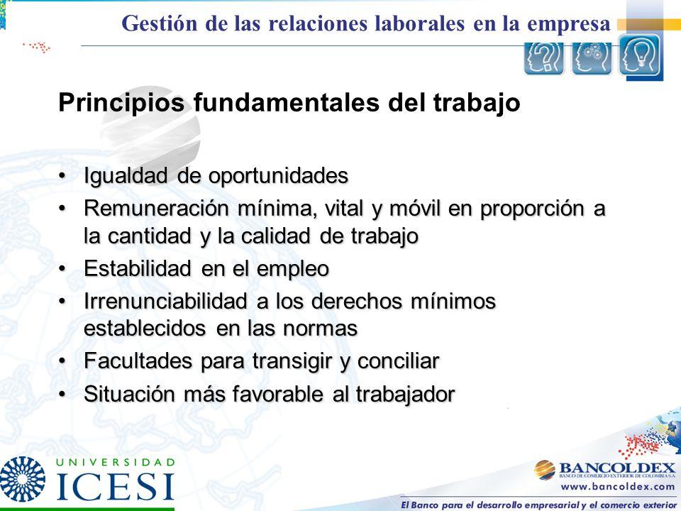 Principios fundamentales del trabajo Igualdad de oportunidadesIgualdad de oportunidades Remuneración mínima, vital y móvil en proporción a la cantidad