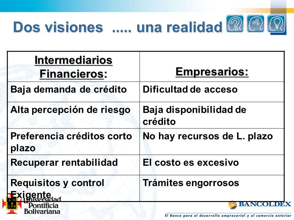 Dos visiones..... una realidad Intermediarios Financieros: Empresarios: Baja demanda de créditoDificultad de acceso Alta percepción de riesgoBaja disp