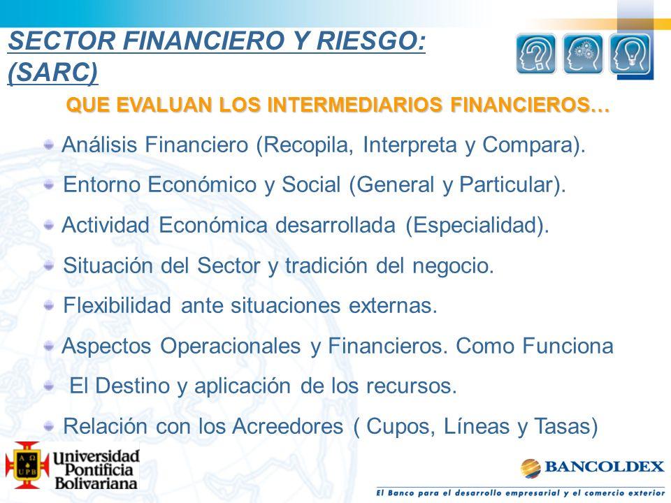 QUE EVALUAN LOS INTERMEDIARIOS FINANCIEROS… Análisis Financiero (Recopila, Interpreta y Compara). Entorno Económico y Social (General y Particular). A