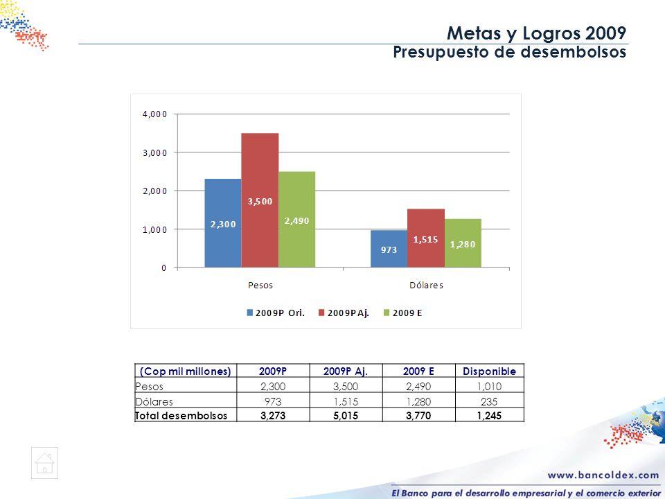 Presupuesto de desembolsos (Cop mil millones)2009P2009P Aj.2009 EDisponible Pesos2,3003,5002,4901,010 Dólares9731,5151,280235 Total desembolsos3,2735,