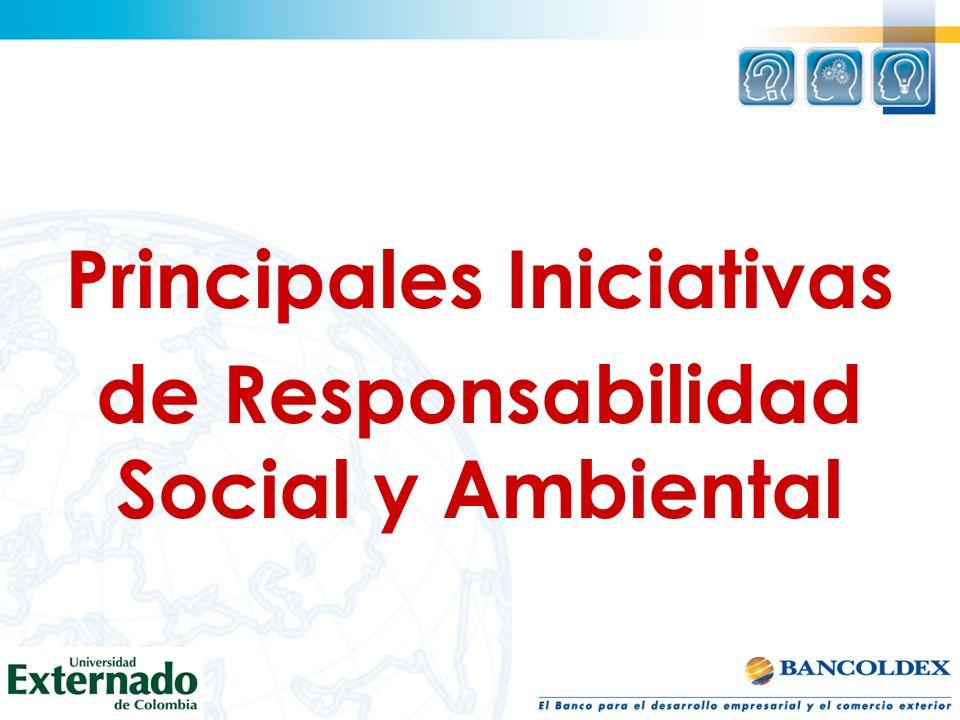 Principales Iniciativas de Responsabilidad Social y Ambiental