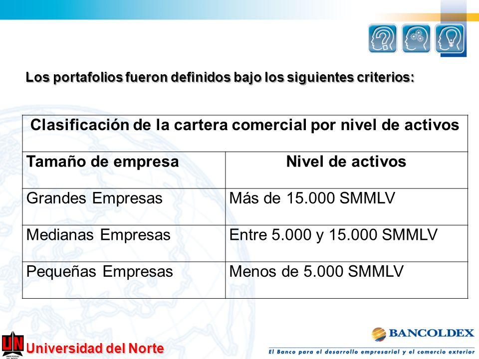 Universidad del Norte Los portafolios fueron definidos bajo los siguientes criterios: Clasificación de la cartera comercial por nivel de activos Tamañ