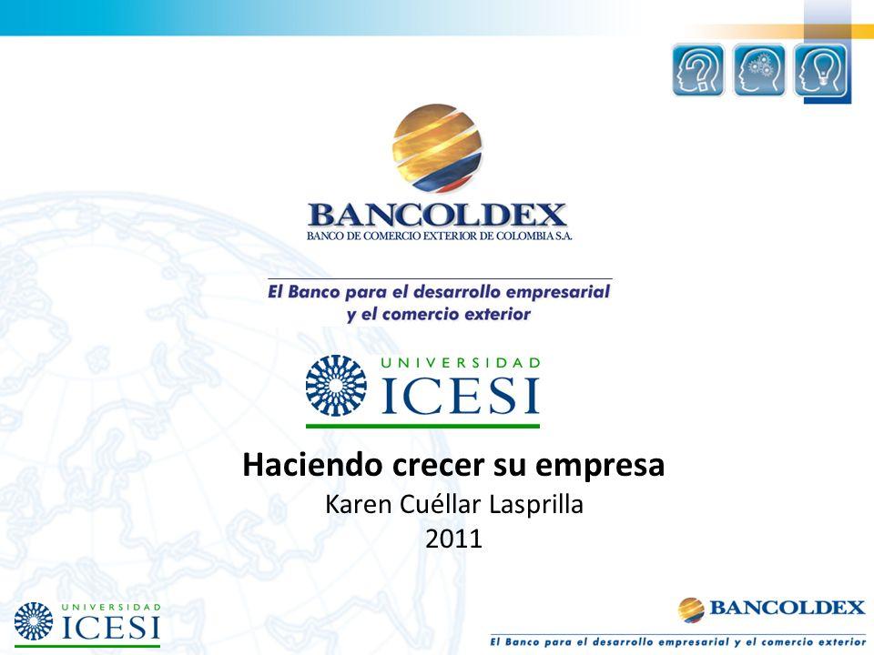 Haciendo crecer su empresa Karen Cuéllar Lasprilla 2011