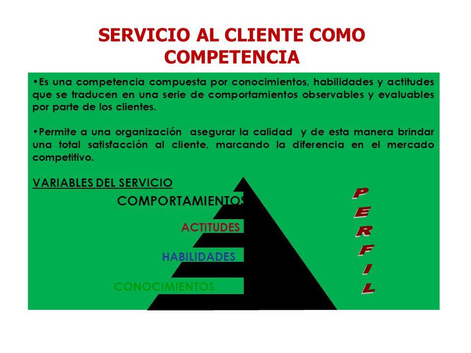Es una competencia compuesta por conocimientos, habilidades y actitudes que se traducen en una serie de comportamientos observables y evaluables por p