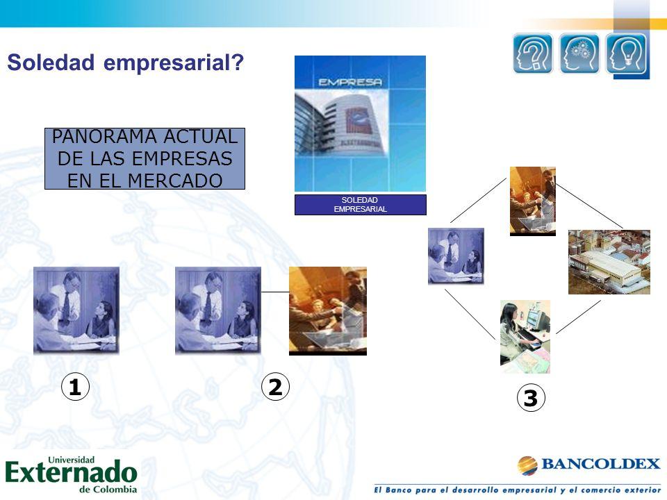 SOLEDAD EMPRESARIAL PANORAMA ACTUAL DE LAS EMPRESAS EN EL MERCADO 12 3 Soledad empresarial?