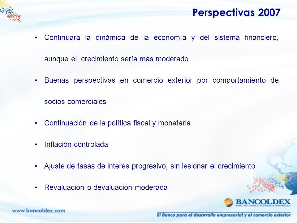 Continuará la dinámica de la economía y del sistema financiero, aunque el crecimiento sería más moderado Buenas perspectivas en comercio exterior por