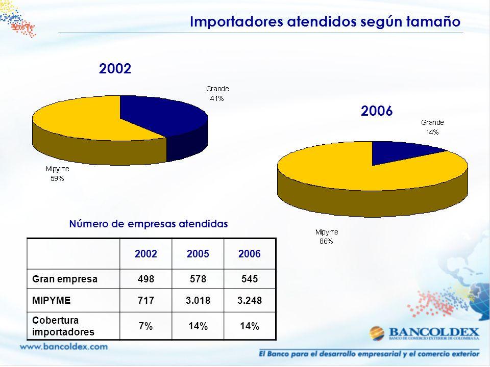 Importadores atendidos según tamaño 2002 2006 200220052006 Gran empresa498578545 MIPYME7173.0183.248 Cobertura importadores 7%14% Número de empresas a