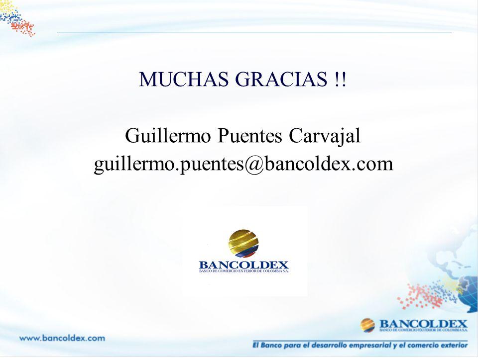 MUCHAS GRACIAS !! Guillermo Puentes Carvajal guillermo.puentes@bancoldex.com