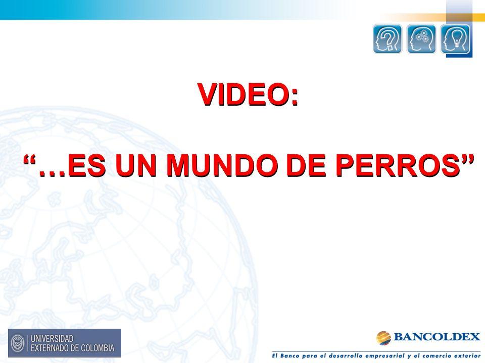 VIDEO: …ES UN MUNDO DE PERROS VIDEO: …ES UN MUNDO DE PERROS