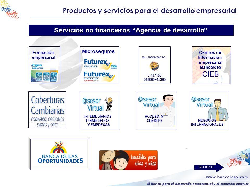 Productos y servicios para el desarrollo empresarial Servicios no financieros Agencia de desarrollo Formación empresarial Centros de Información Empre