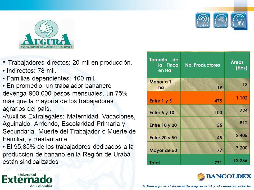 Trabajadores directos: 20 mil en producción. Indirectos: 78 mil.