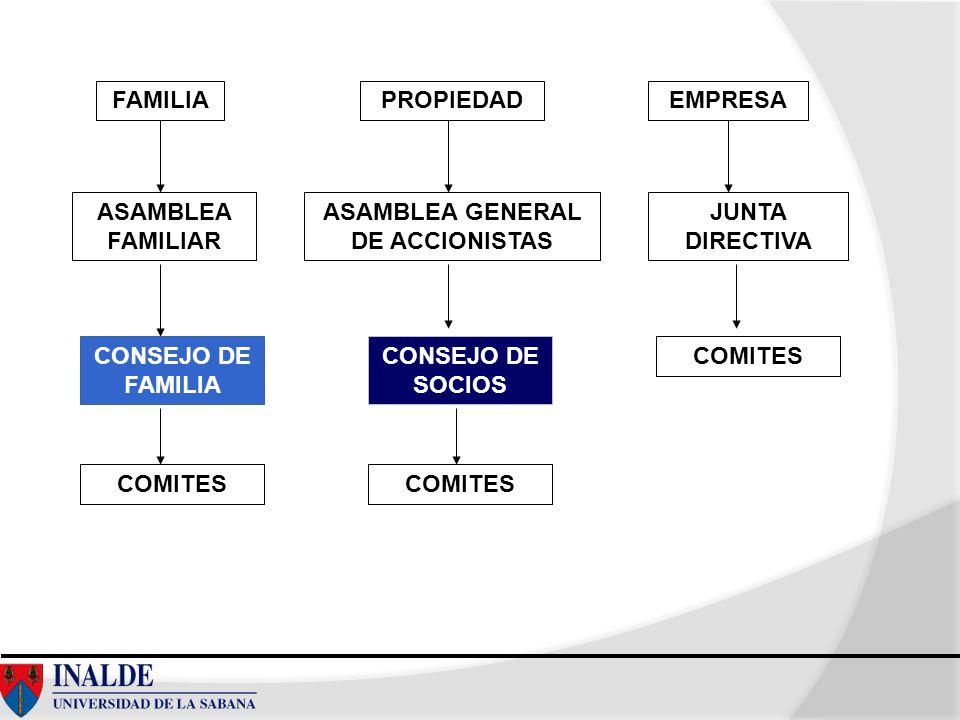 Modelo de Investigación FACTORES INTERNOS FACTORES EXTERNOS FACTORES TRASCENDENTES PARTICIPACION FEMENINA EN CARGOS DIRECTIVOS/ORGANOS DE GOBIERNO EN LA EF COLOMBIANA Basado en Juan Antonio Pérez López, 1987