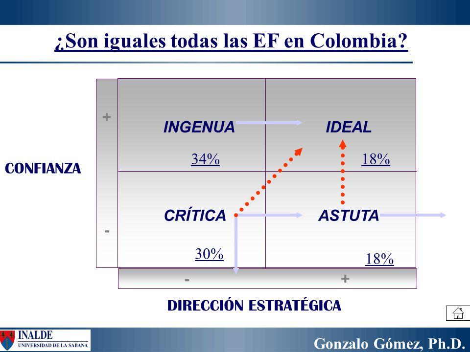 Gonzalo Gómez, Ph.D. CONFIANZA DIRECCIÓN ESTRATÉGICA INGENUAIDEAL CRÍTICAASTUTA +-+- -+-+ ¿Son iguales todas las EF en Colombia? 34% 30% 18%