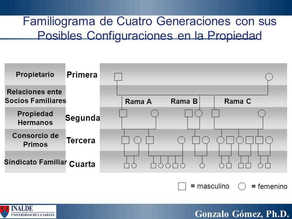 Gonzalo Gómez, Ph.D. Familiograma de Cuatro Generaciones con sus Posibles Configuraciones en la Propiedad