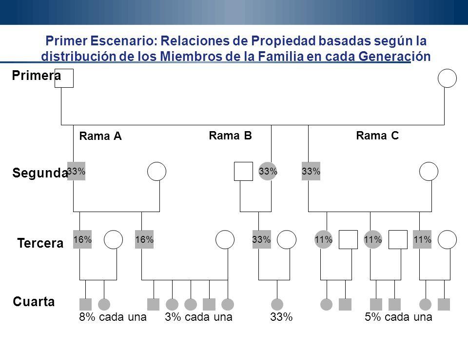 Gonzalo Gómez, Ph.D. 37 Gonzalo Gómez Ph.D. Productiva Ltda. Primer Escenario: Relaciones de Propiedad basadas según la distribución de los Miembros d