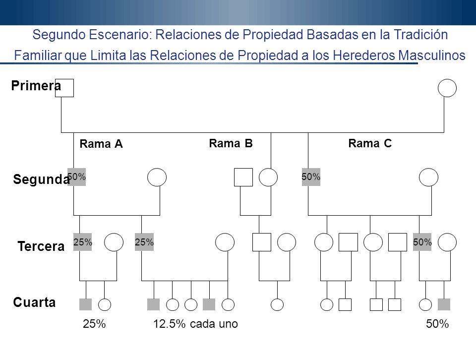 Gonzalo Gómez, Ph.D. 38 Gonzalo Gómez Ph.D. Productiva Ltda. Segundo Escenario: Relaciones de Propiedad Basadas en la Tradición Familiar que Limita la