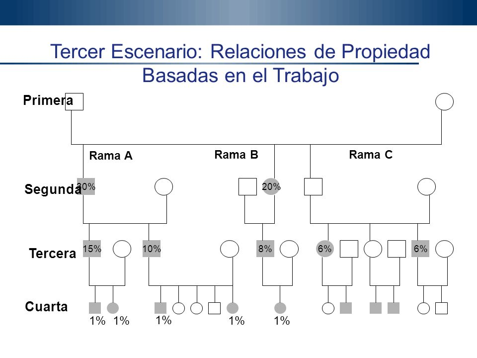 Gonzalo Gómez, Ph.D. 39 Gonzalo Gómez Ph.D. Productiva Ltda. Tercer Escenario: Relaciones de Propiedad Basadas en el Trabajo 30%20% 15%10%8%6% Rama A