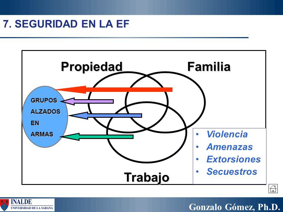 Gonzalo Gómez, Ph.D. PropiedadFamilia Trabajo GRUPOSALZADOSENARMAS 7. SEGURIDAD EN LA EF Violencia Amenazas Extorsiones Secuestros