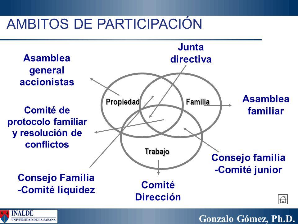 Gonzalo Gómez, Ph.D. AMBITOS DE PARTICIPACIÓN PropiedadFamilia Trabajo Asamblea familiar Asamblea general accionistas Comité Dirección Consejo Familia