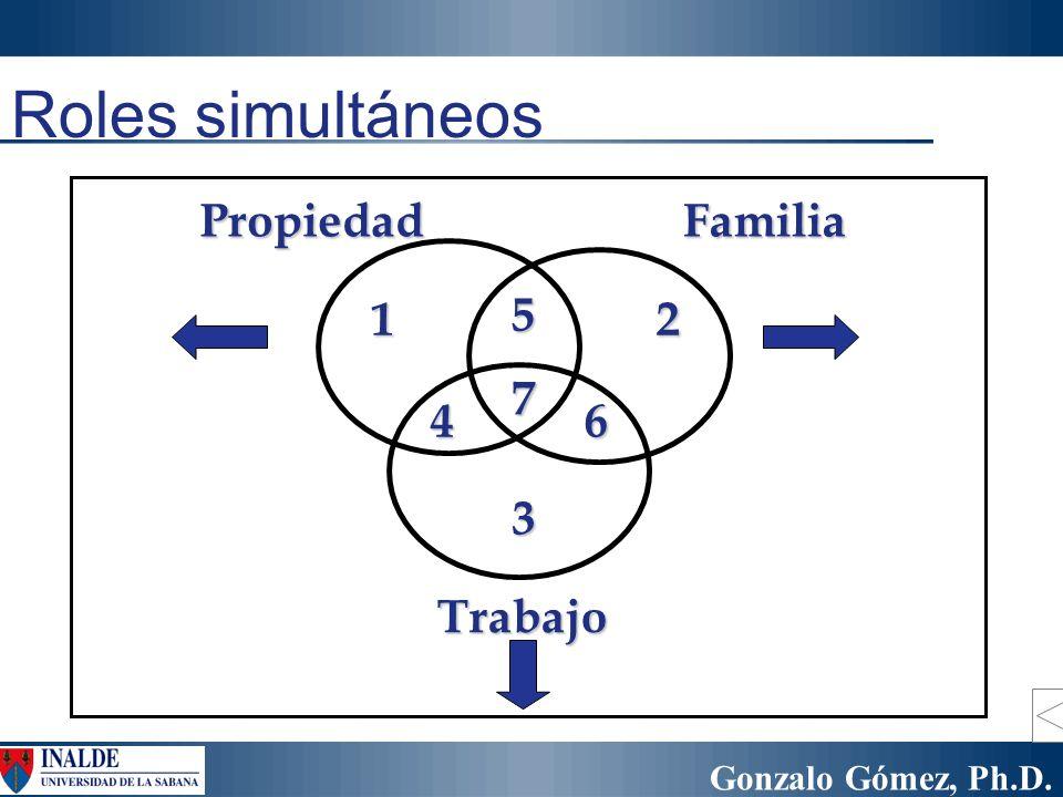 Gonzalo Gómez, Ph.D. Roles simultáneos 12 3 4 5 6 7 PropiedadFamilia Trabajo