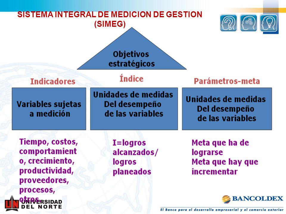SISTEMA INTEGRAL DE MEDICION DE GESTION (SIMEG)