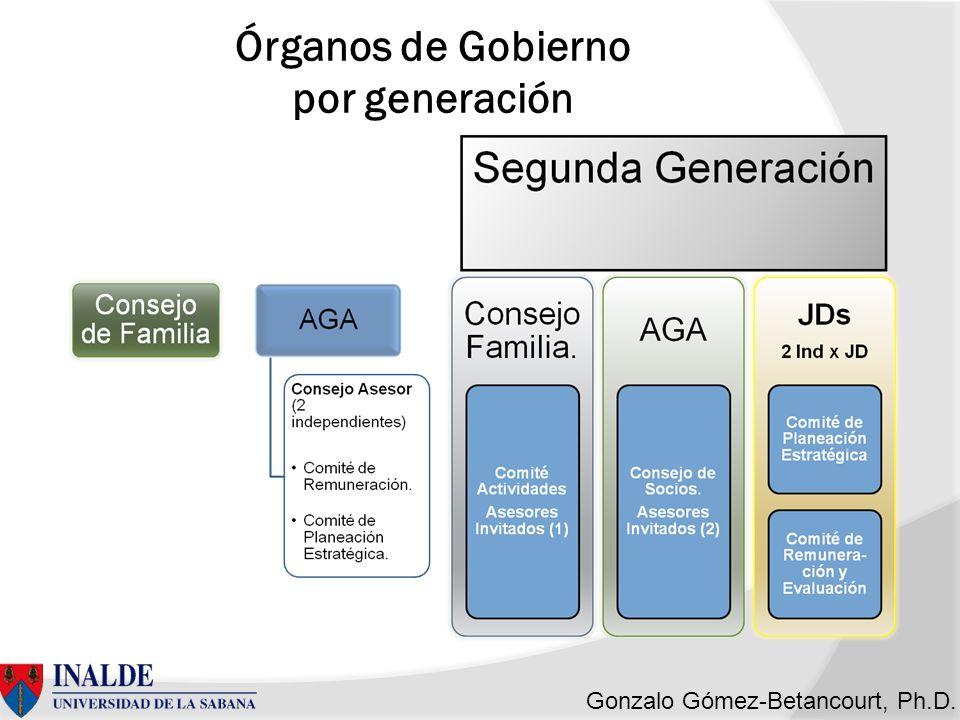 Gonzalo Gómez-Betancourt, Ph.D. Órganos de Gobierno por generación