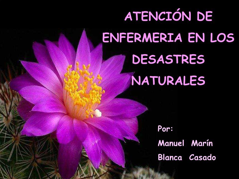 ATENCIÓN DE ENFERMERIA EN LOS DESASTRES NATURALES Por: Manuel Marín Blanca Casado