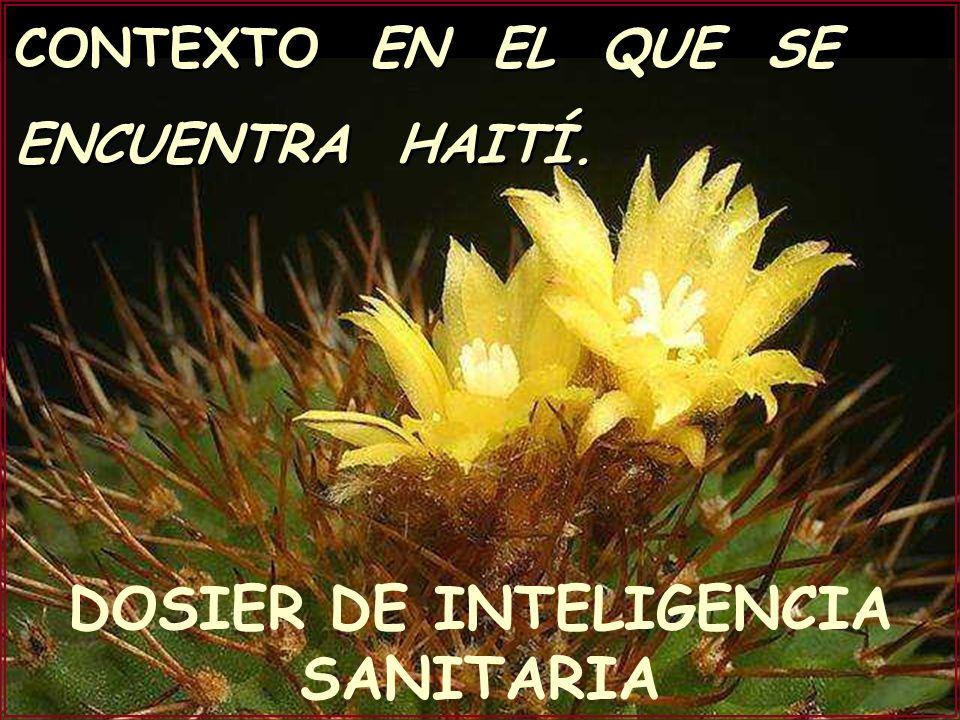 CONTEXTO EN EL QUE SE ENCUENTRA HAITÍ. DOSIER DE INTELIGENCIA SANITARIA