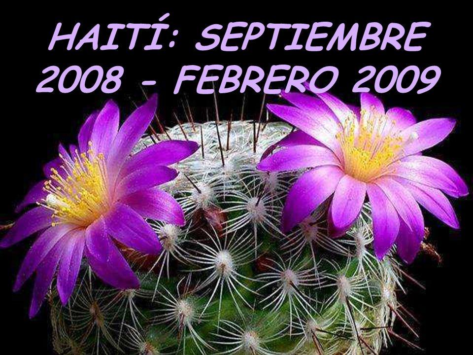 HAITÍ: SEPTIEMBRE 2008 - FEBRERO 2009