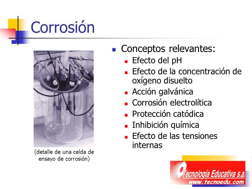 Corrosión Conceptos relevantes: Efecto del pH Efecto de la concentración de oxígeno disuelto Acción galvánica Corrosión electrolítica Protección catód