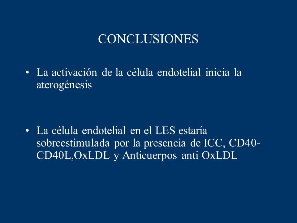 CONCLUSIONES La activación de la célula endotelial inicia la aterogénesis La célula endotelial en el LES estaría sobreestimulada por la presencia de I