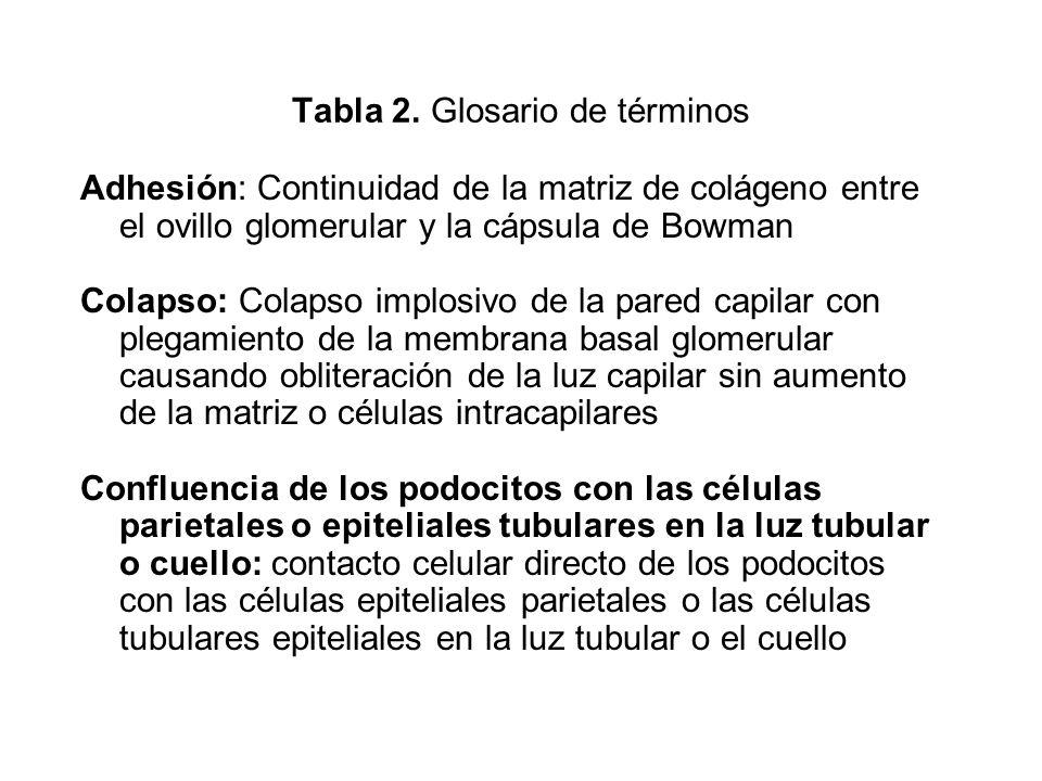 Tabla 2. Glosario de términos Adhesión: Continuidad de la matriz de colágeno entre el ovillo glomerular y la cápsula de Bowman Colapso: Colapso implos