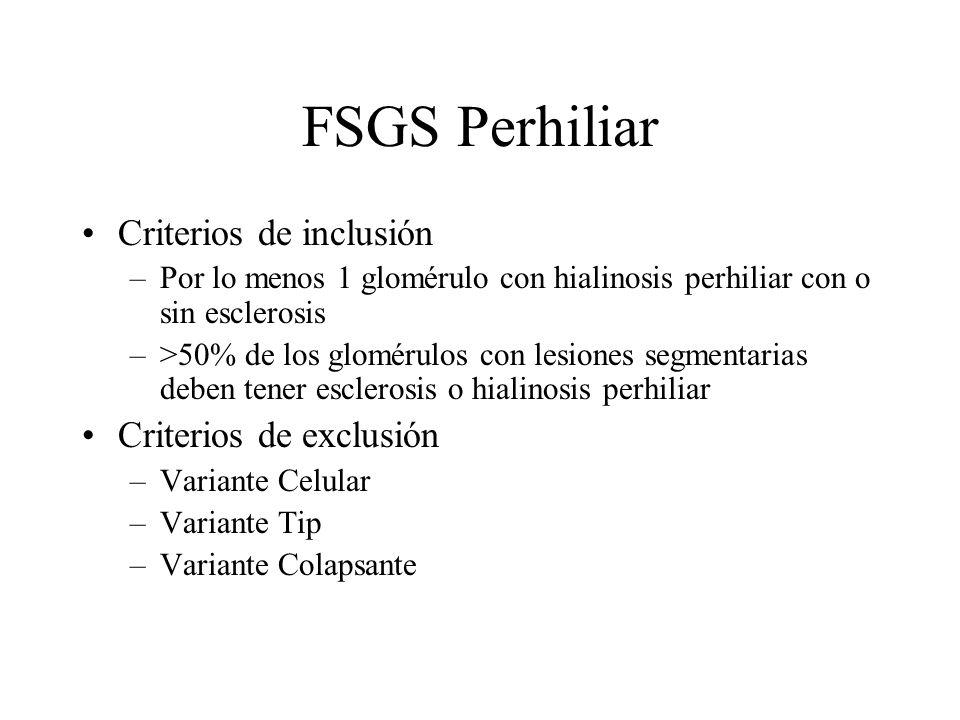 FSGS Perhiliar Criterios de inclusión –Por lo menos 1 glomérulo con hialinosis perhiliar con o sin esclerosis –>50% de los glomérulos con lesiones seg