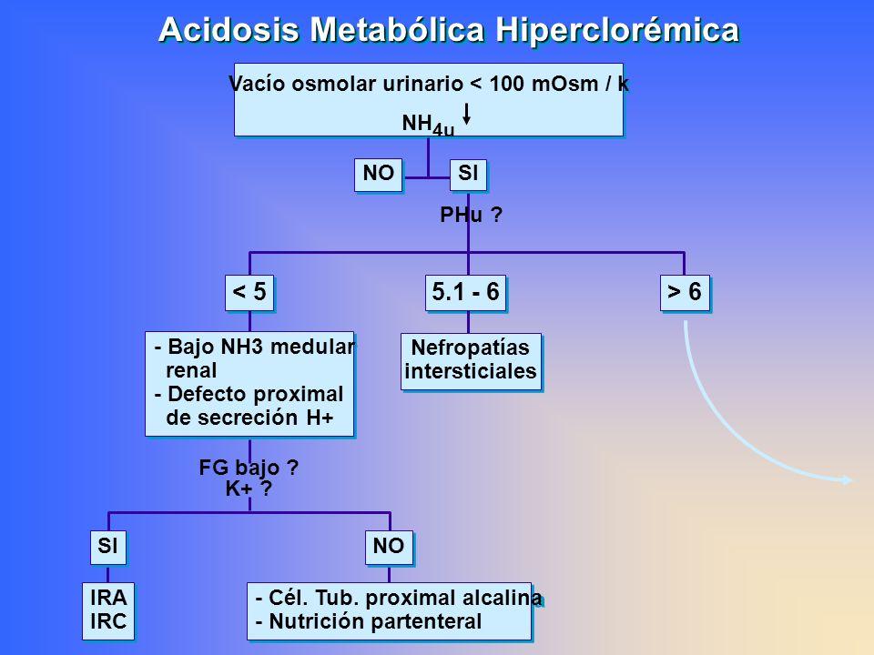 IRA IRC IRA IRC - Cél. Tub. proximal alcalina - Nutrición partenteral - Cél. Tub. proximal alcalina - Nutrición partenteral Acidosis Metabólica Hiperc