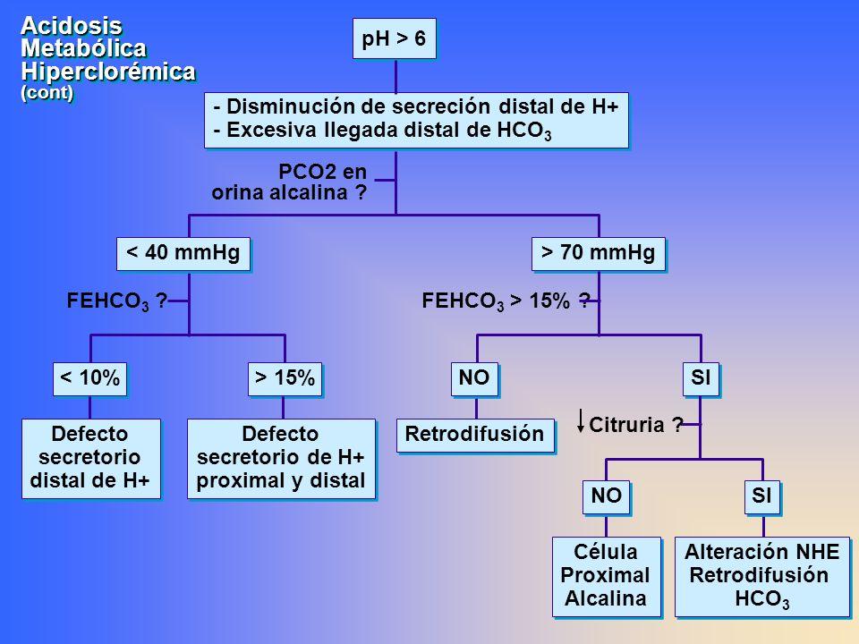 AcidosisMetabólicaHiperclorémica(cont)AcidosisMetabólicaHiperclorémica(cont) pH > 6 - Disminución de secreción distal de H+ - Excesiva llegada distal