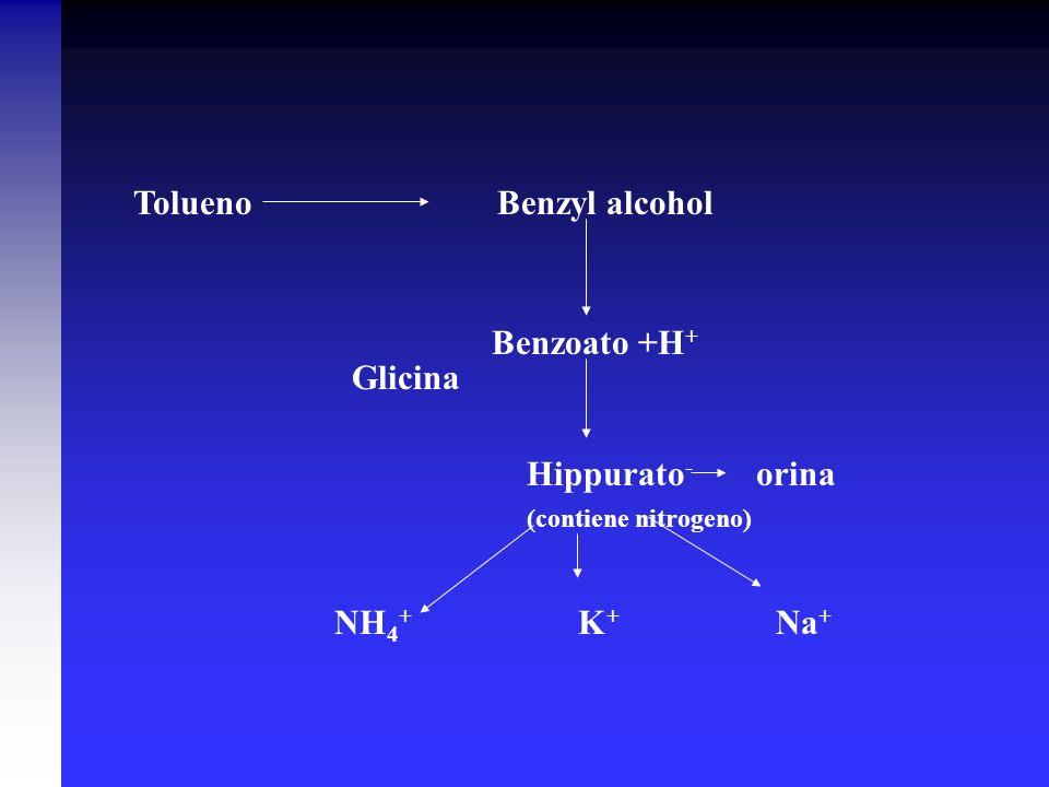 Tolueno Benzyl alcohol Benzoato +H + Hippurato - orina (contiene nitrogeno) NH 4 + K + Na + Glicina