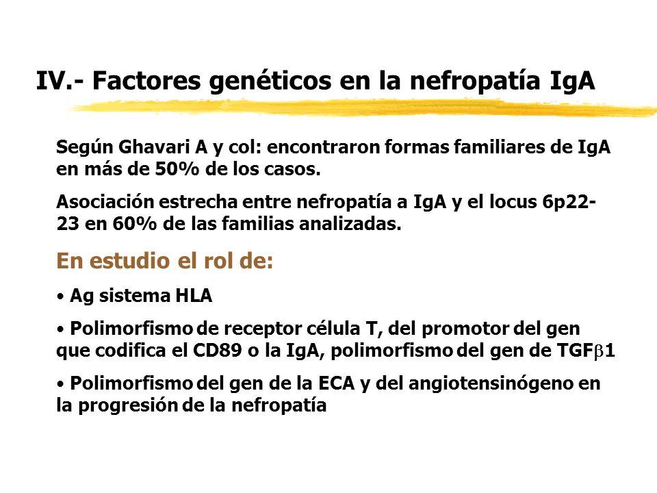 IV.- Factores genéticos en la nefropatía IgA Según Ghavari A y col: encontraron formas familiares de IgA en más de 50% de los casos. Asociación estrec