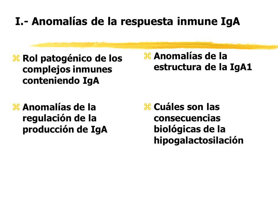 I.- Anomalías de la respuesta inmune IgA zRol patogénico de los complejos inmunes conteniendo IgA zAnomalías de la regulación de la producción de IgA