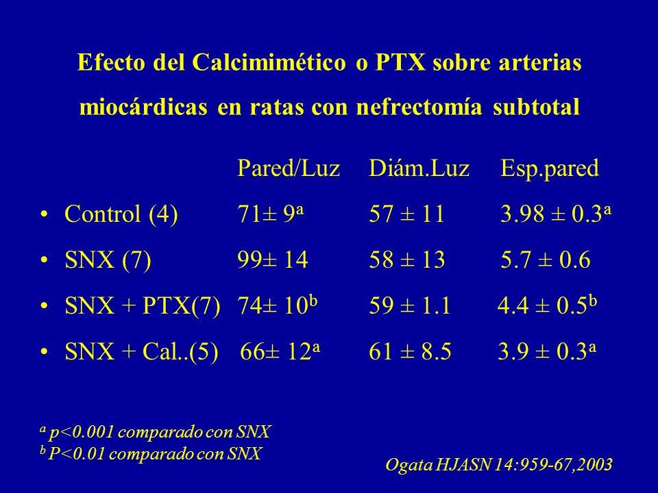 Efecto del Calcimimético o PTX sobre arterias miocárdicas en ratas con nefrectomía subtotal Pared/LuzDiám.LuzEsp.pared Control (4)71± 9 a 57 ± 113.98